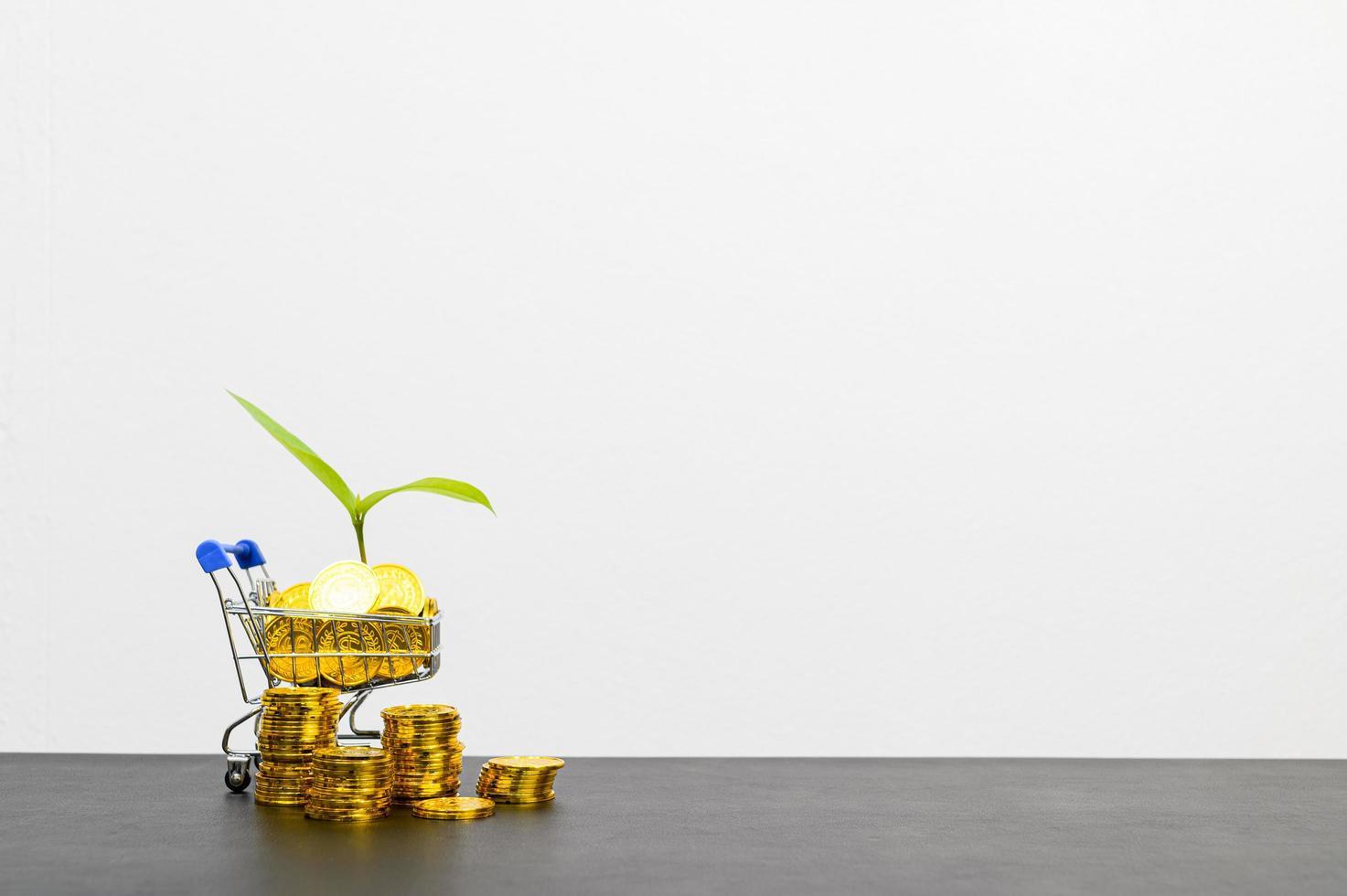 begreppet ekonomisk tillväxt med mynt foto