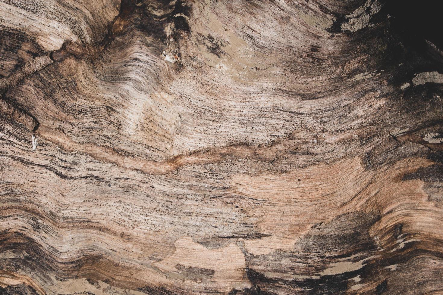mörkt trägolv bakgrund foto