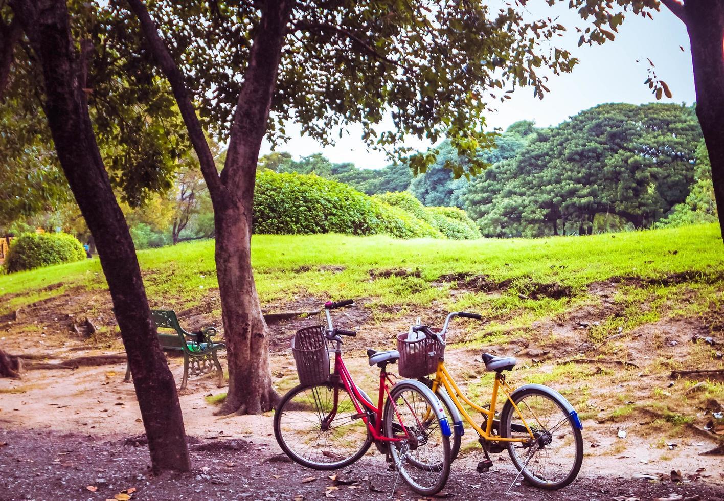 klassisk vintage retro cykelstopp i park foto