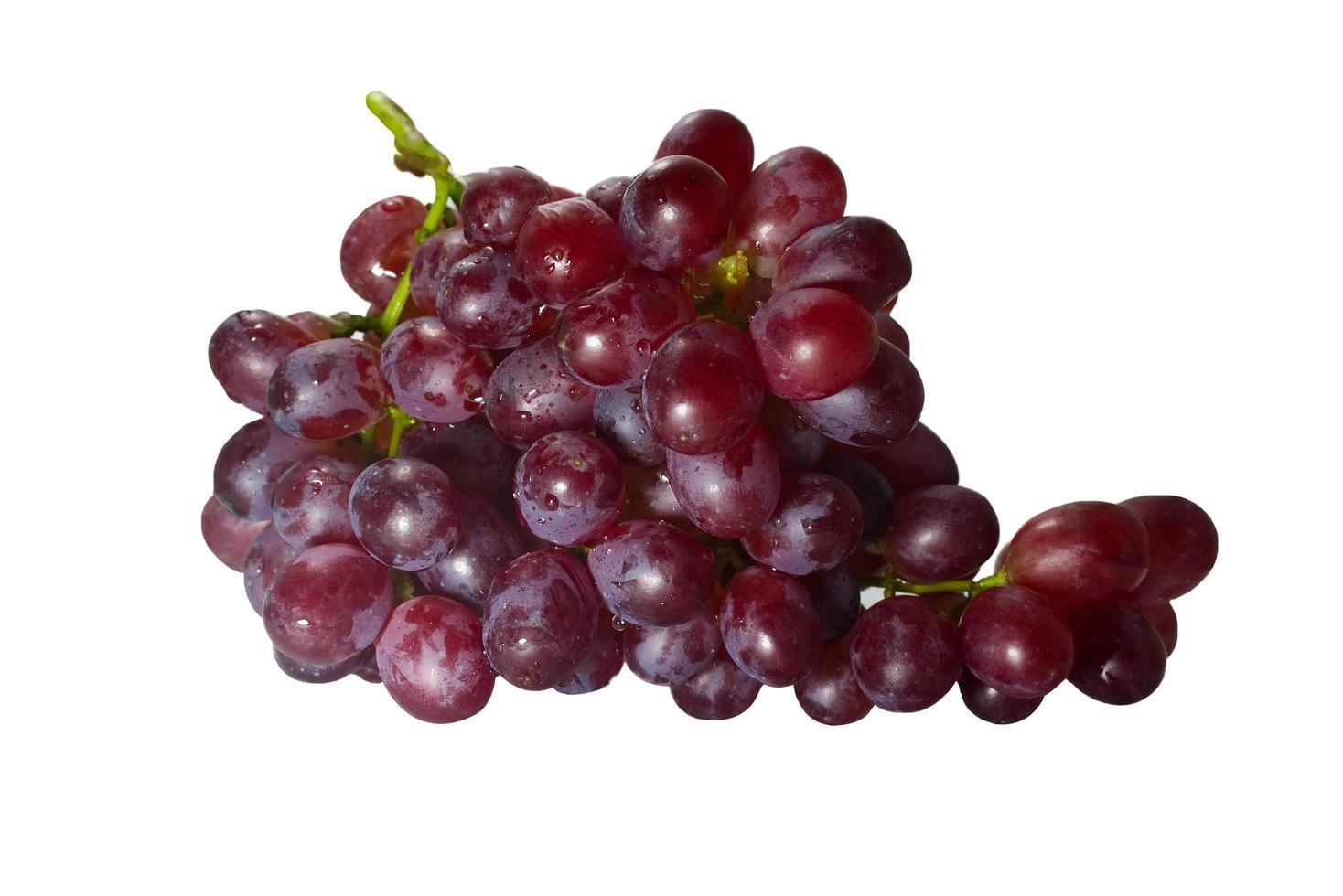 röda druvor på en vit bakgrund foto
