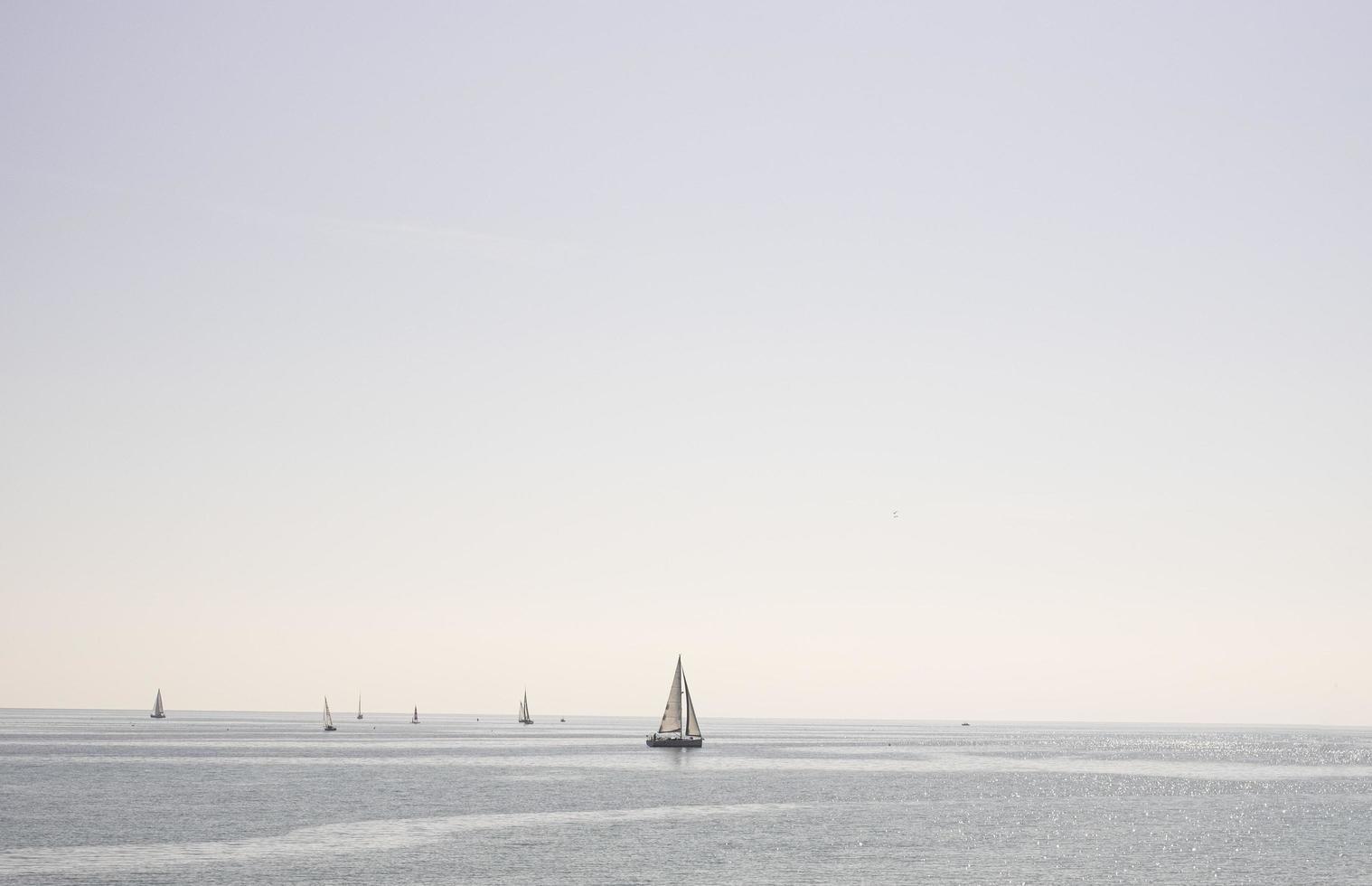segelbåt seglar i havet på en klar dag foto