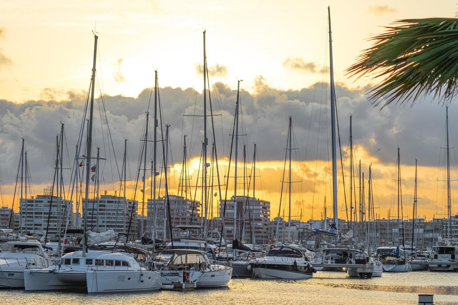 torrevieja, spanien, 2020 - vit och svart båt på bryggan under dagtid foto