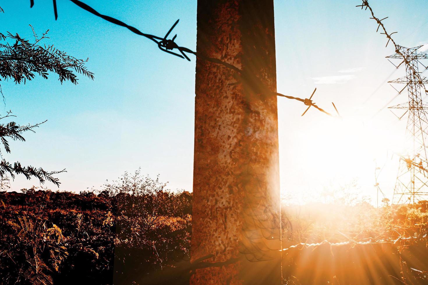 taggtrådsstaket med grov lofi redigera foto