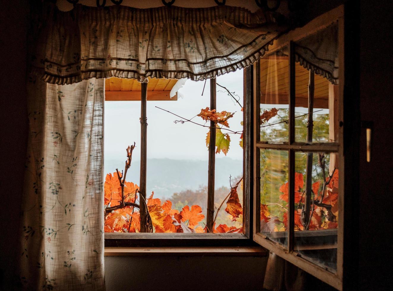 idyllisk sikt genom ett fönster på en stuga på hösten foto