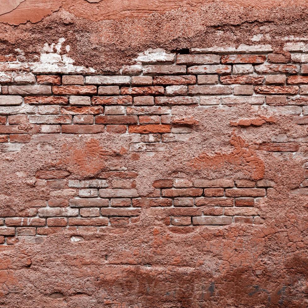 grunge tegelvägg bakgrund foto