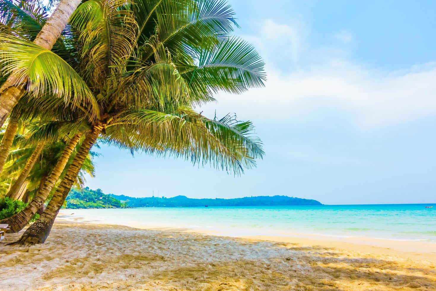 vacker tropisk strand foto