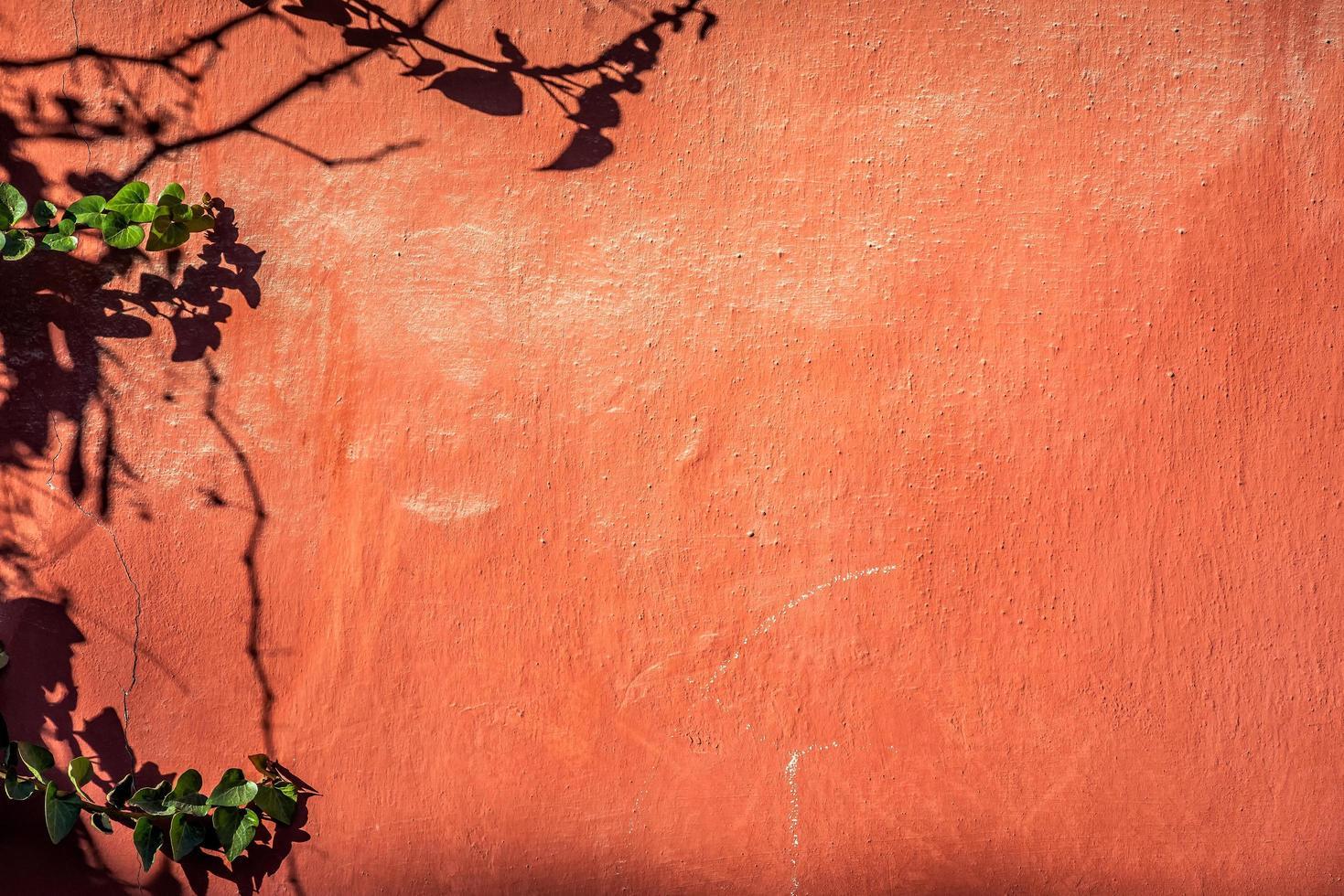 illa röd vägg foto