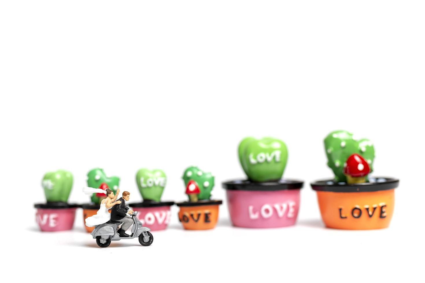 miniatyrpar som rider en motorcykel bredvid miniatyrsuckulenta växter, alla hjärtans dagskoncept foto