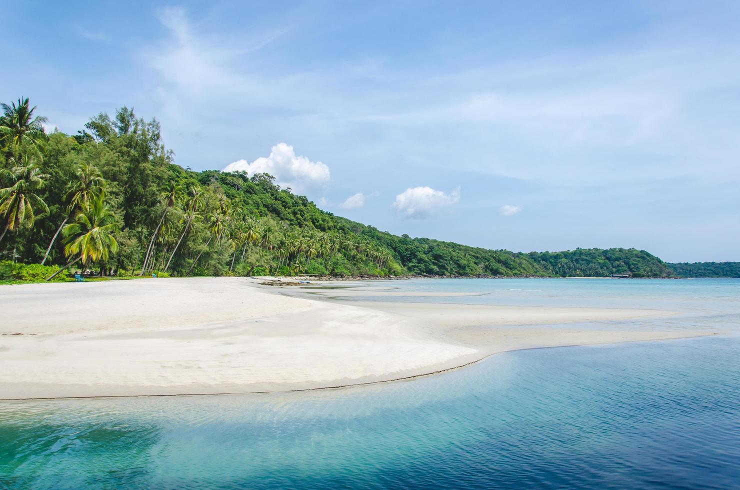 tom tropisk strand foto