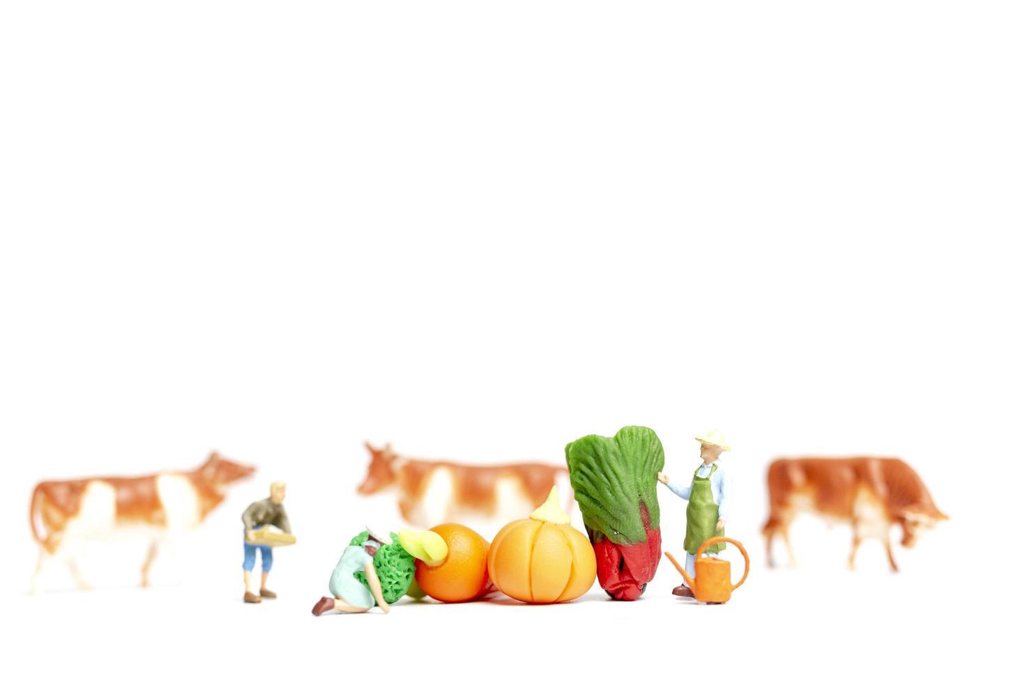 miniatyrträdgårdsmästare som skördar grönsaker på en vit bakgrund, jordbruksbegrepp foto