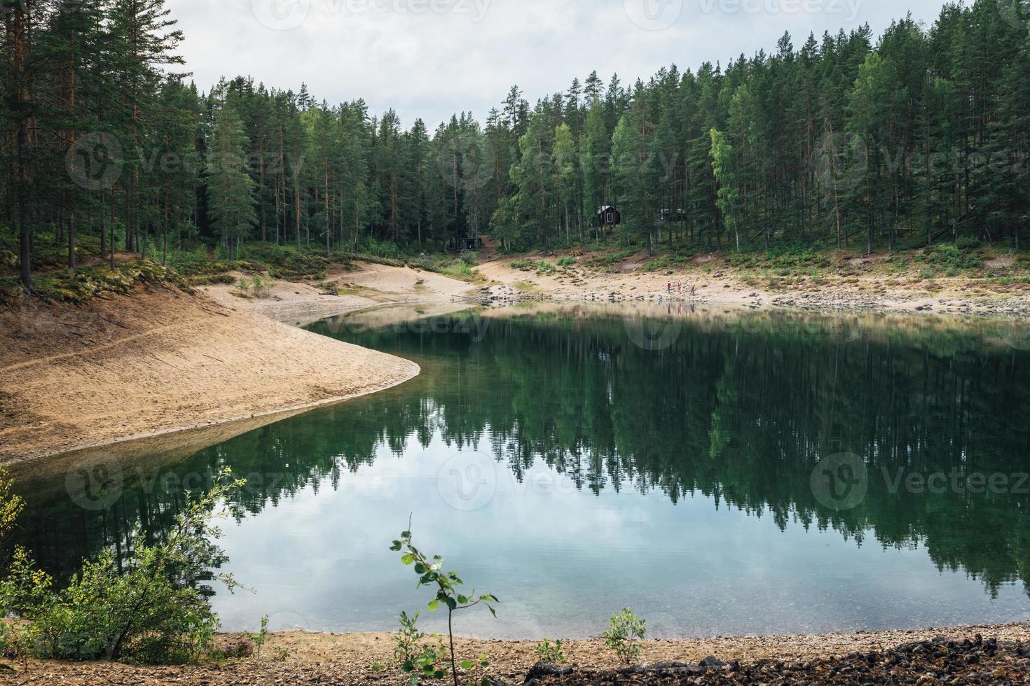 vacker utsikt från det gröna tjärn naturreservatet i sverige foto