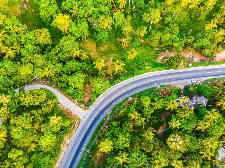 Flygfoto över en väg i skogen foto