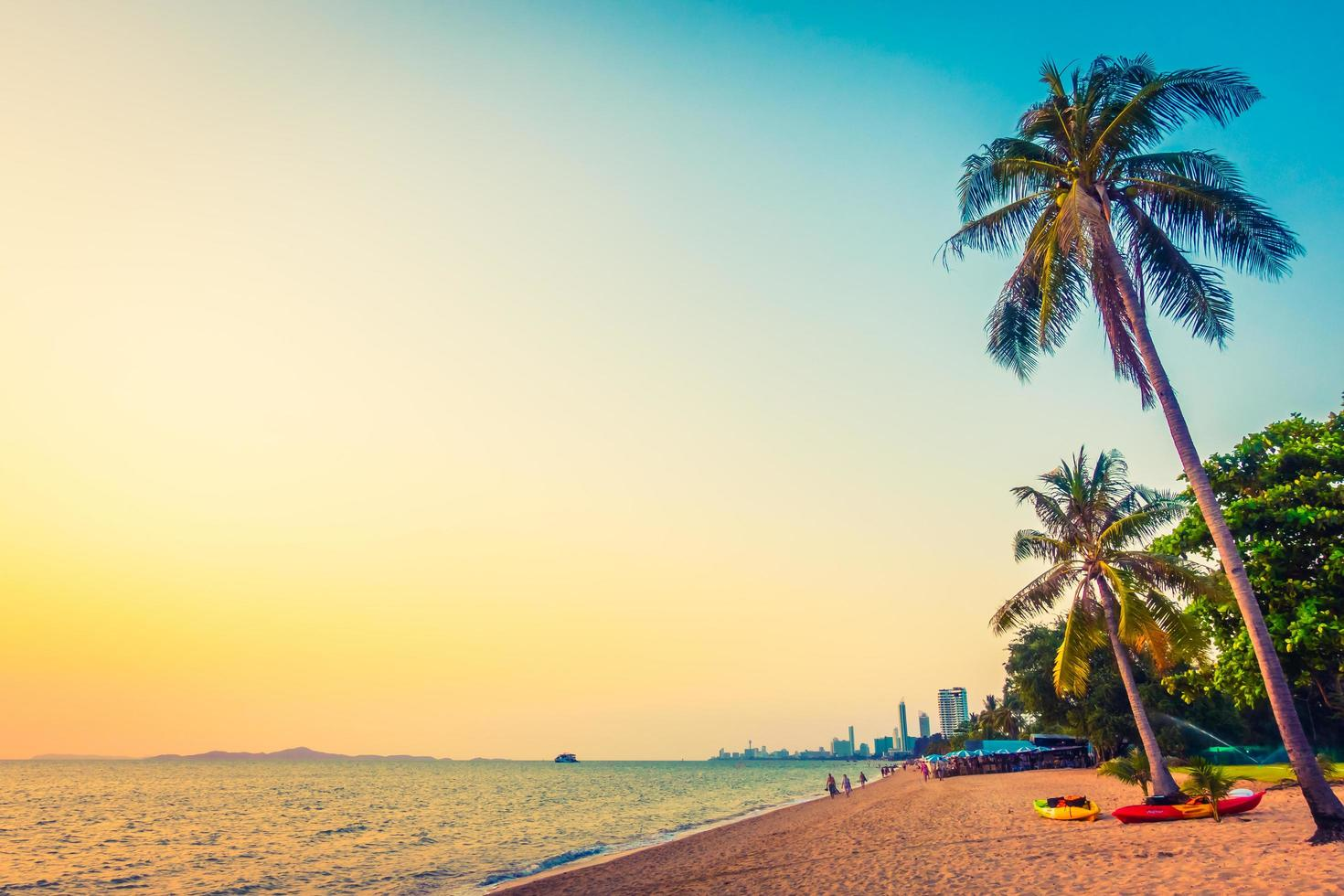 palmträd på stranden foto