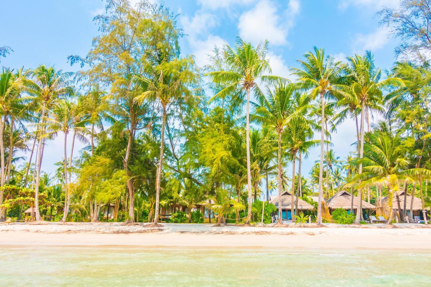 hav och strand foto