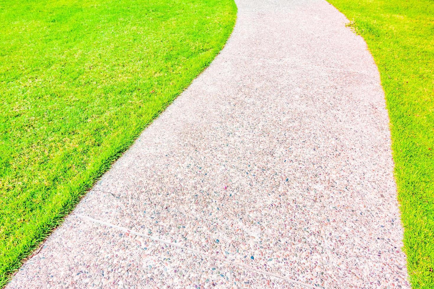 stenbana väg i trädgården foto