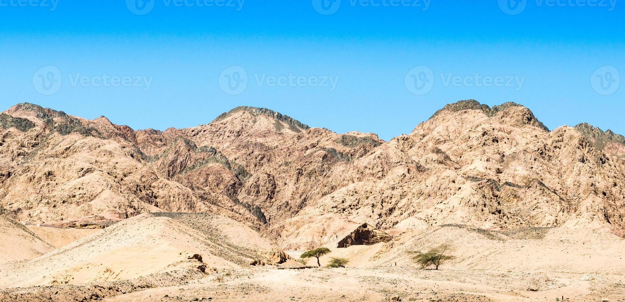bruna kullar i öknen foto