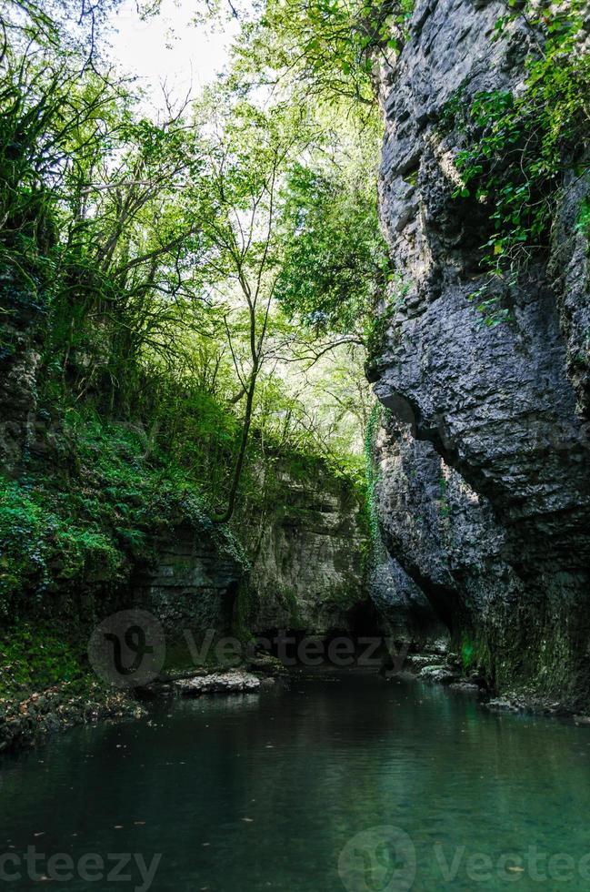 berg flod med mossa på stenar foto