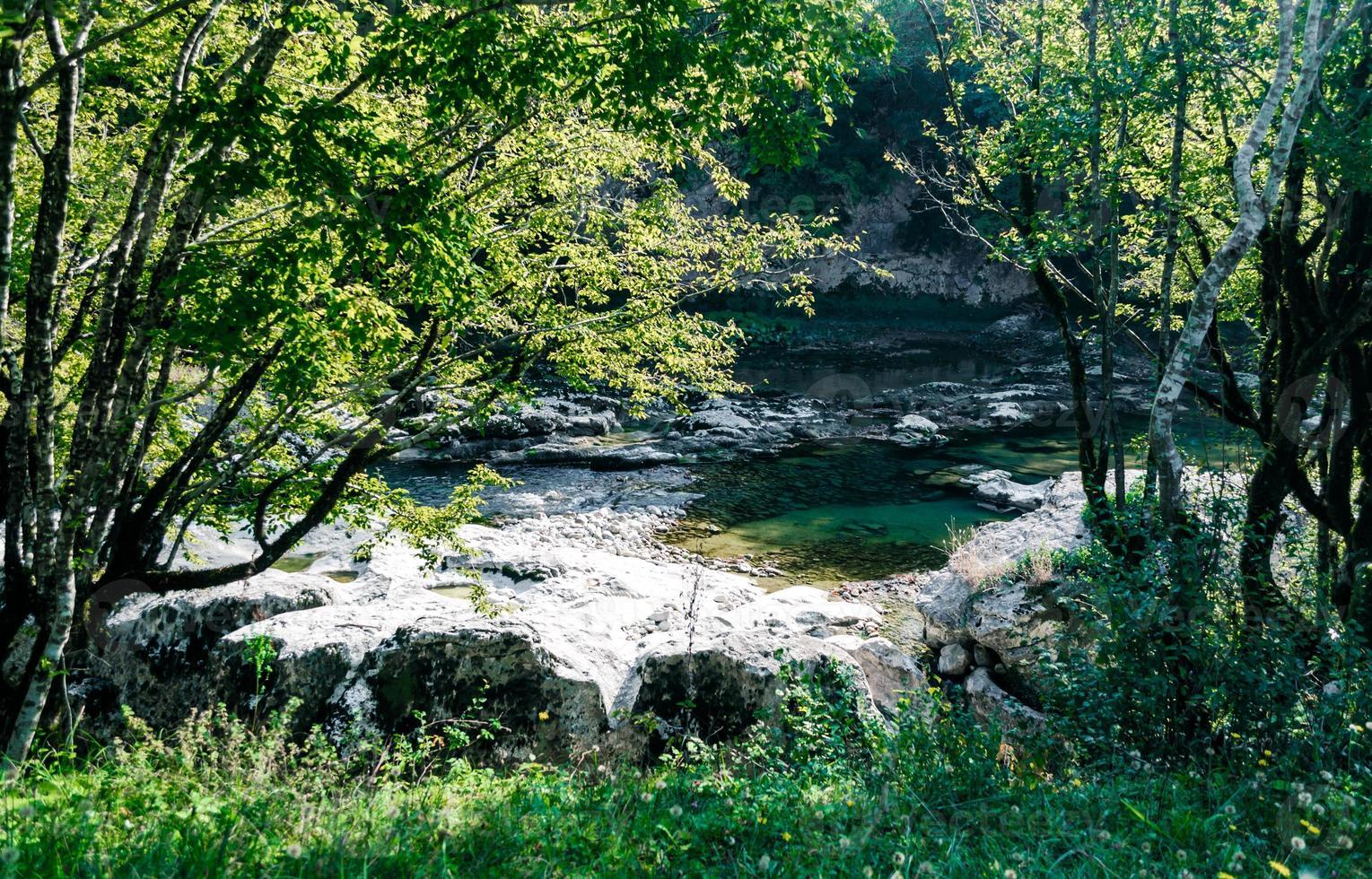 tittar ner på en flod foto