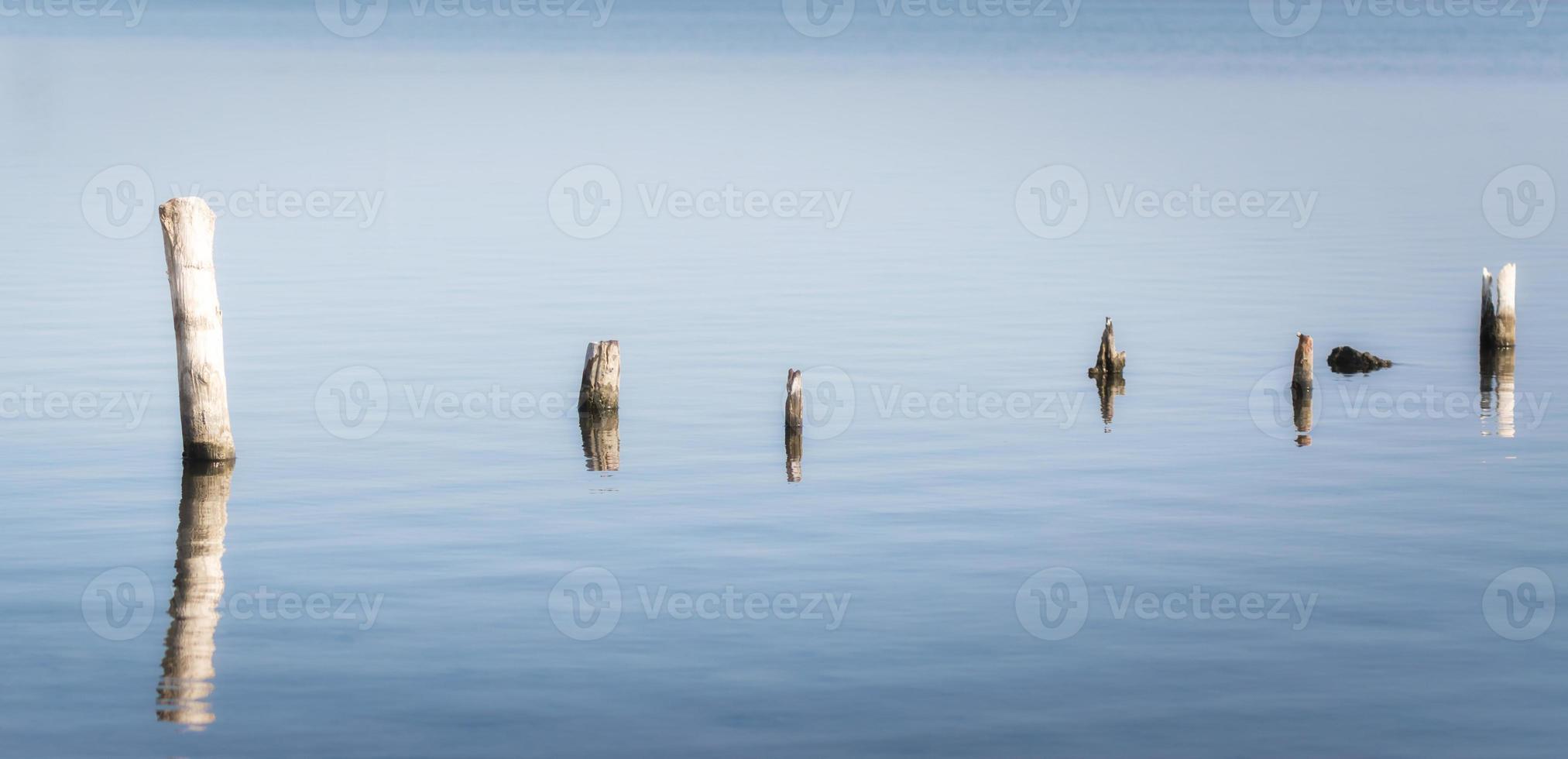 trästolpar i lugnt vatten foto