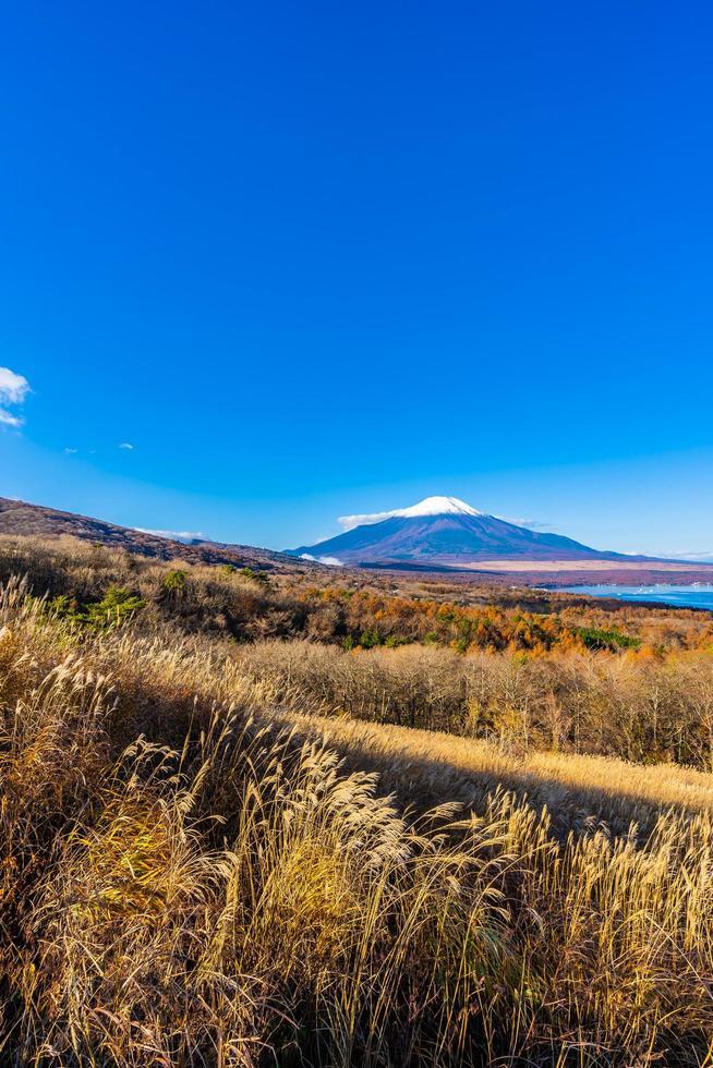 vacker mt. fuji vid Yamanaka sjön, Japan foto