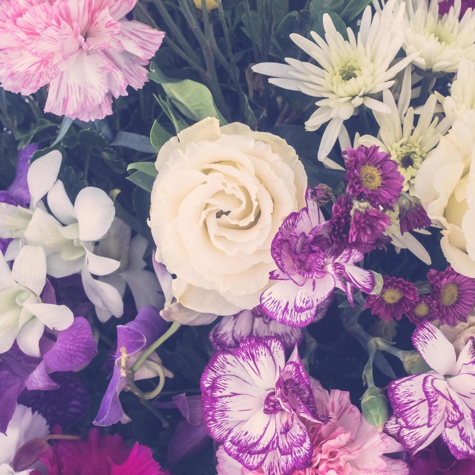 vacker blomma bakgrund foto