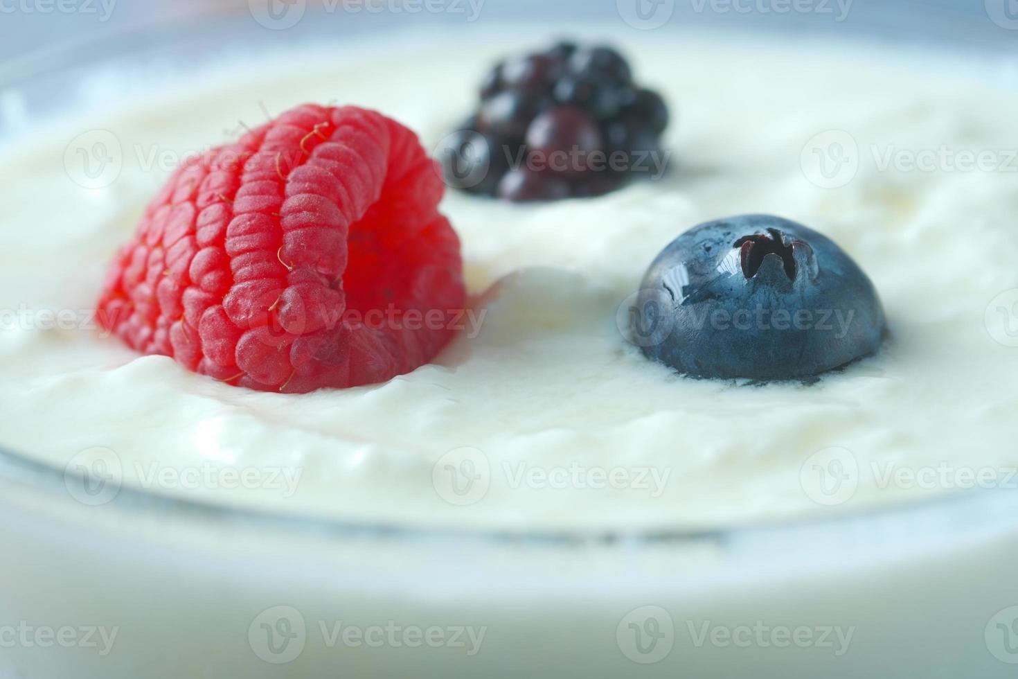 färsk yoghurt med blåbär i en skål foto