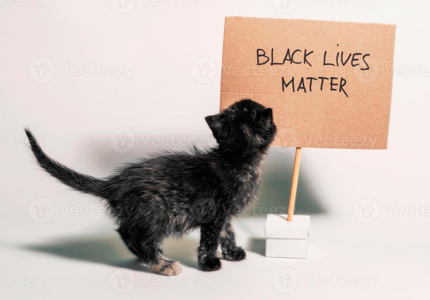 kattunge med svarta liv betyder tecken foto