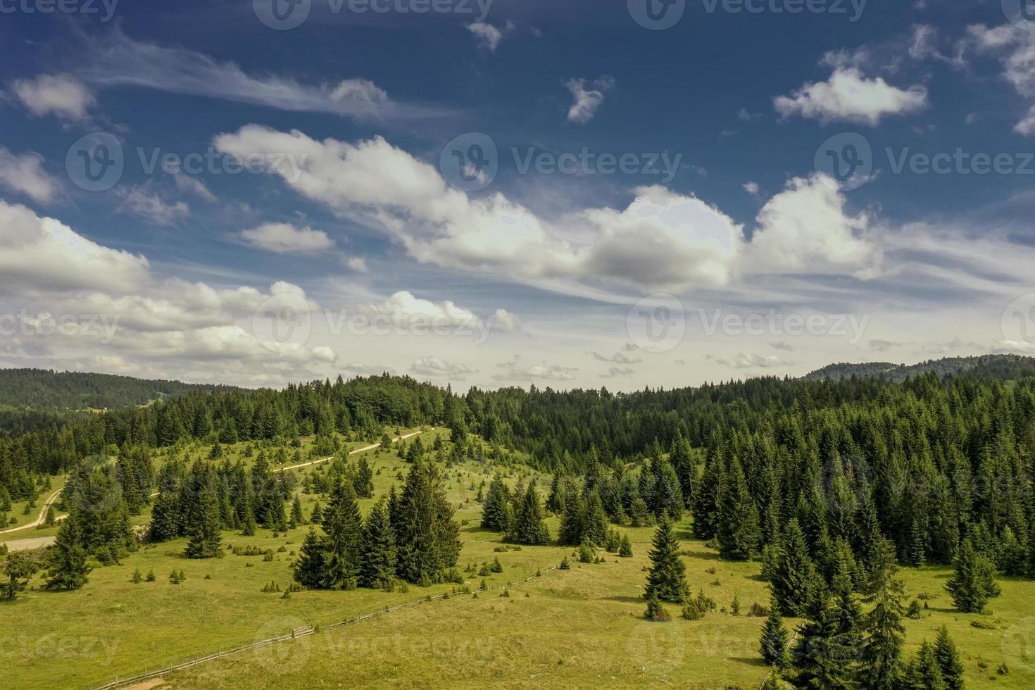 Flygfoto på bergskogen en sommardag foto
