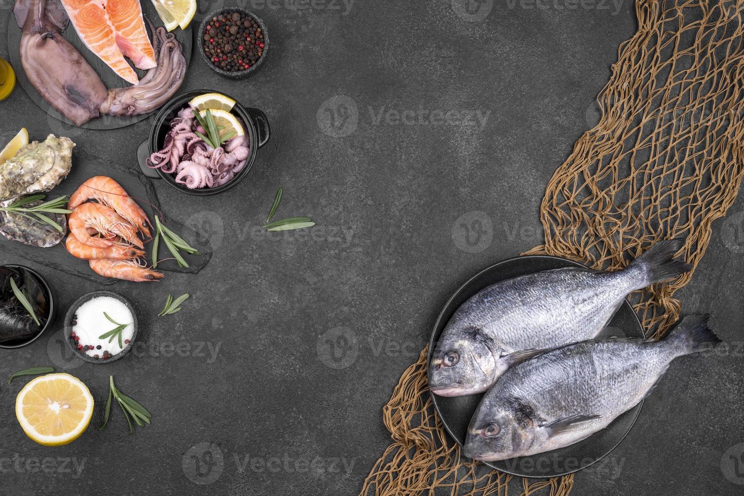 ingredienser för skaldjur med fisknät och kopieringsutrymme foto