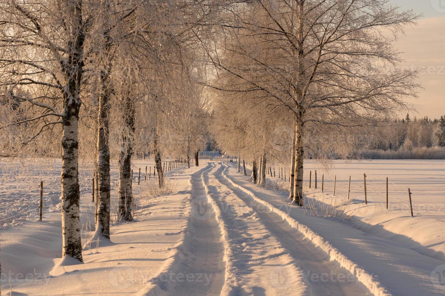 snöig bygdväg en solig vinterdag foto