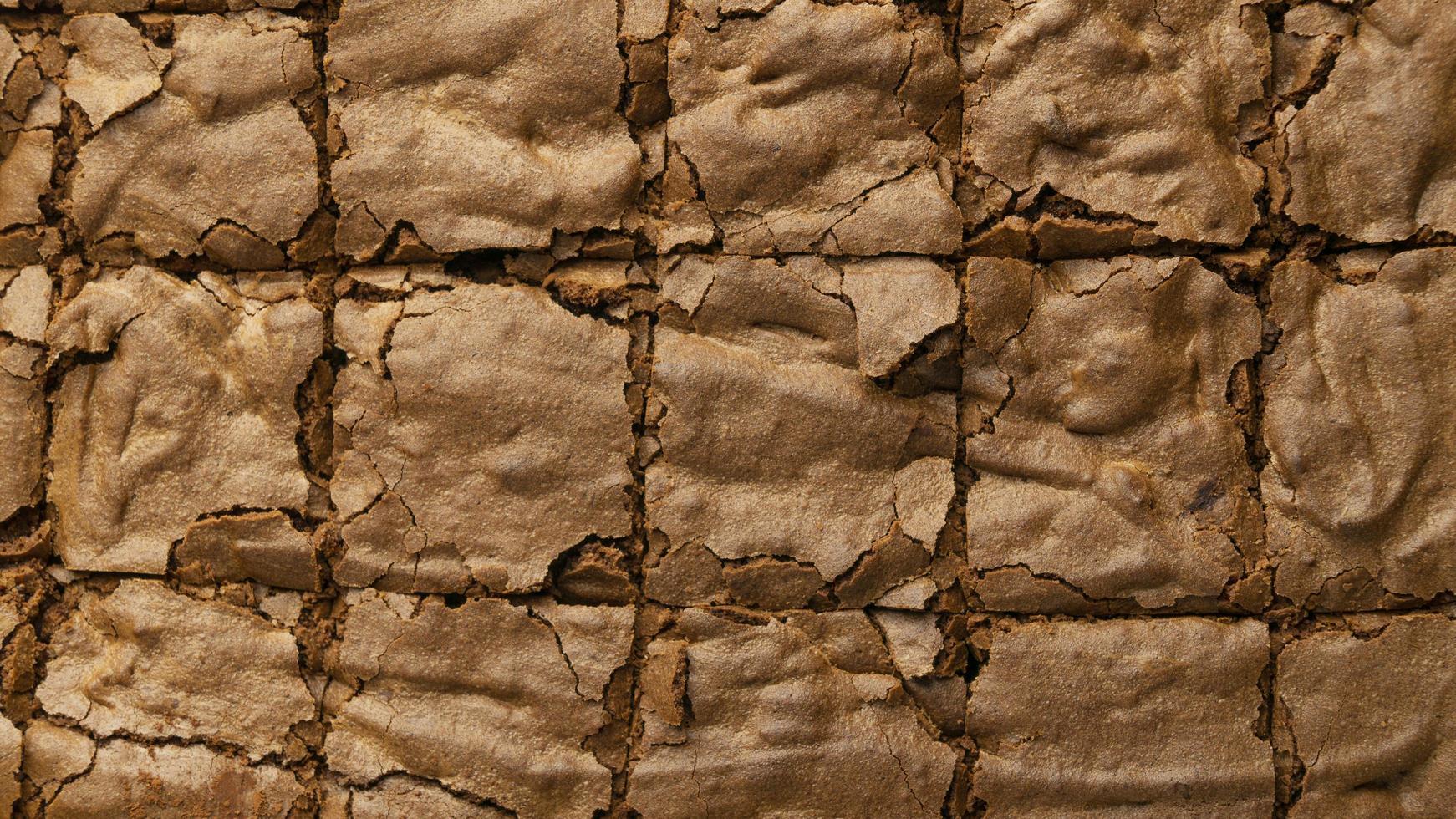 brownie rutor skivade foto