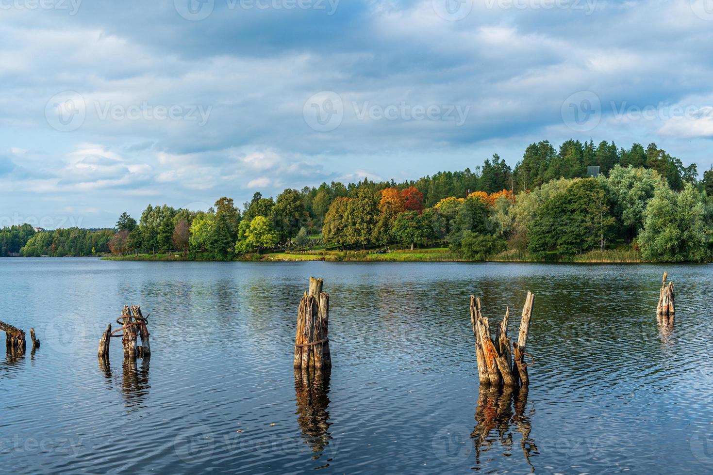 vacker utsikt över en sjö och träd foto