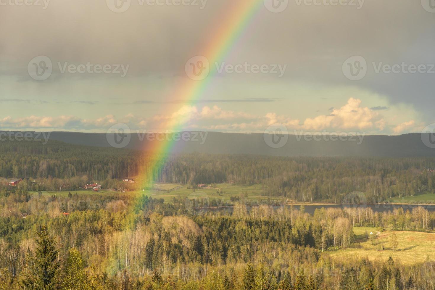 regnbåge i ett fält foto