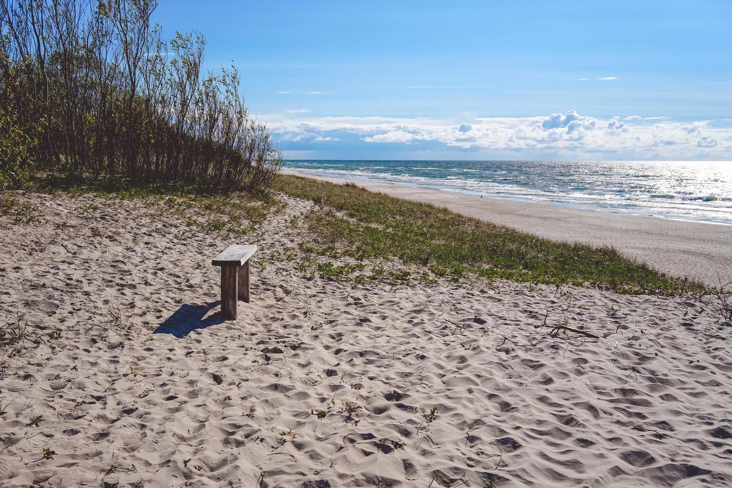 marinmålning med kust på den curonian spottet foto
