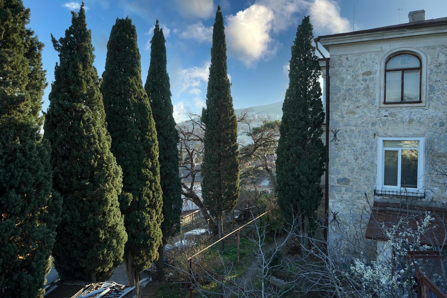 yalta, krim. stadslandskap foto