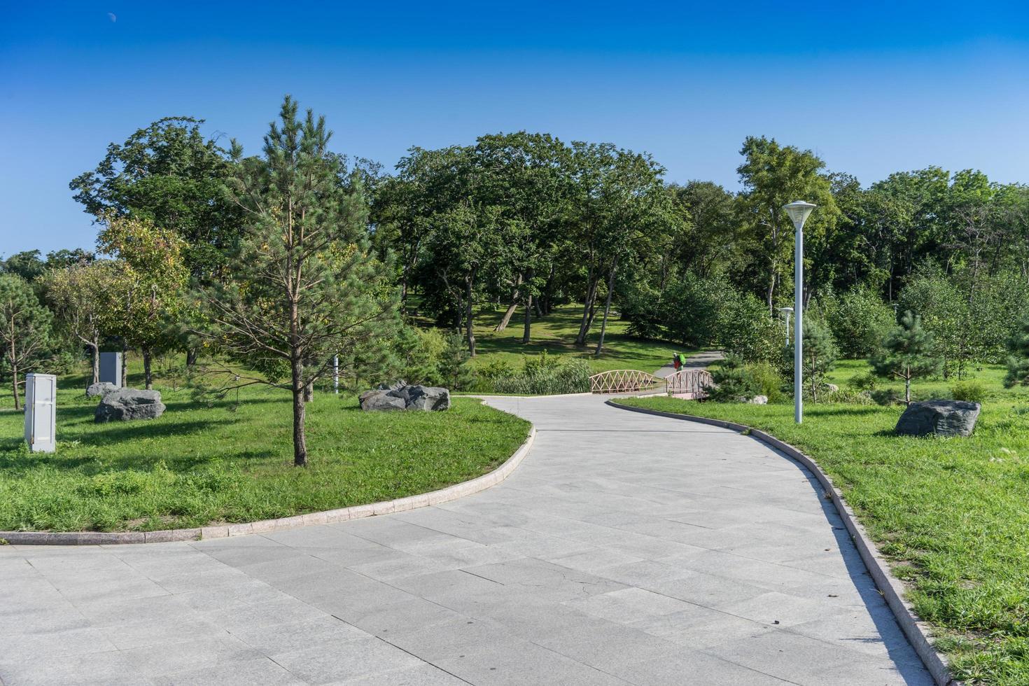 en stig i en modern välskött park med gröna träd och en träbro foto