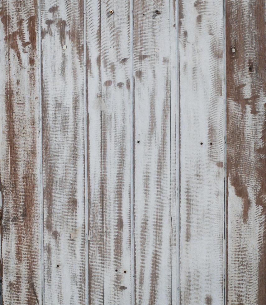 vit träskiva bakgrund foto