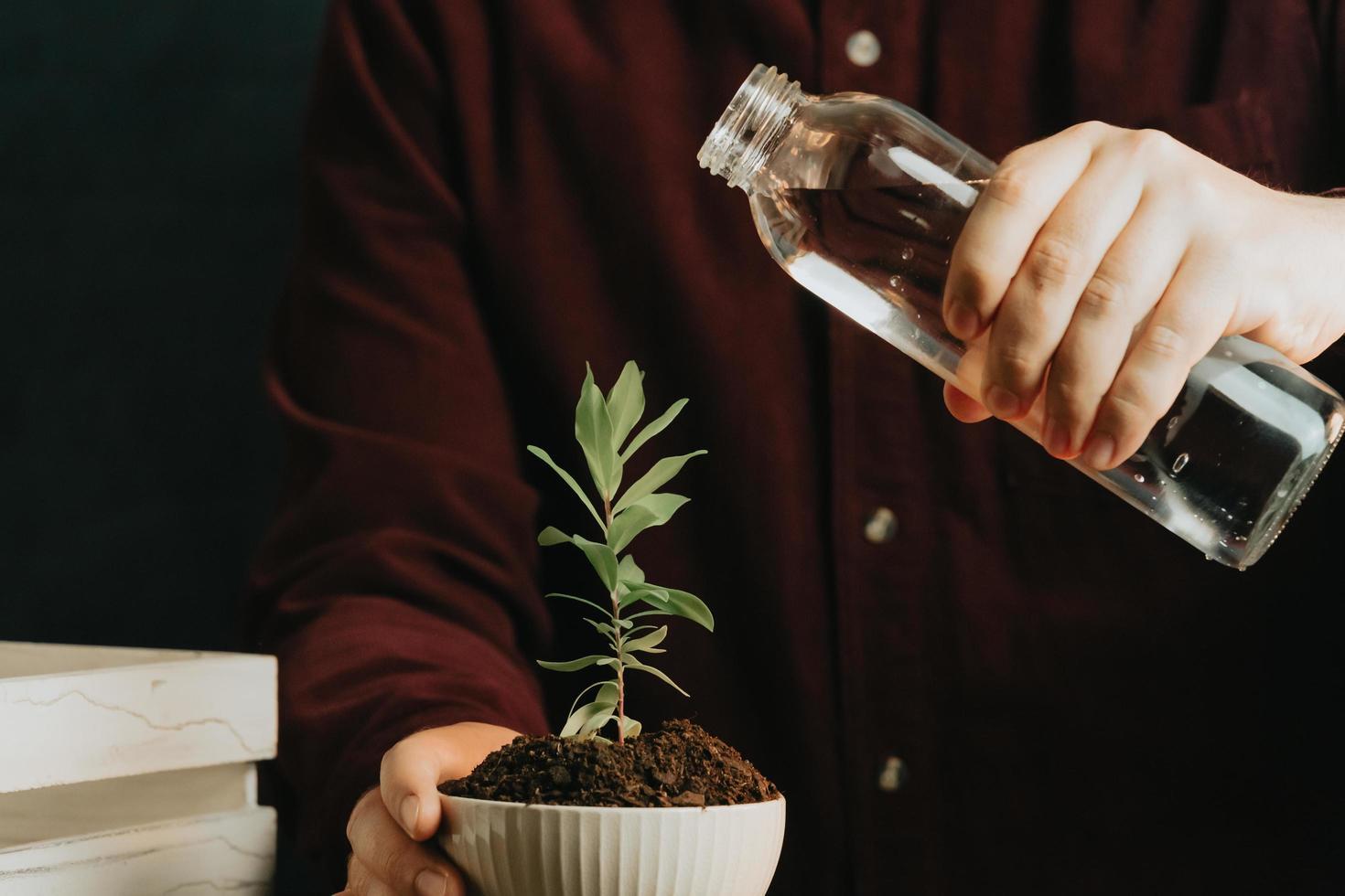 närbild av en man som håller på att vattna en växt foto