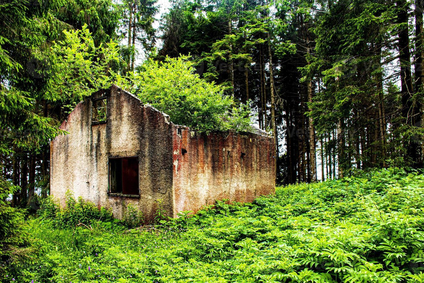 övergiven hus täckt med vegetation foto