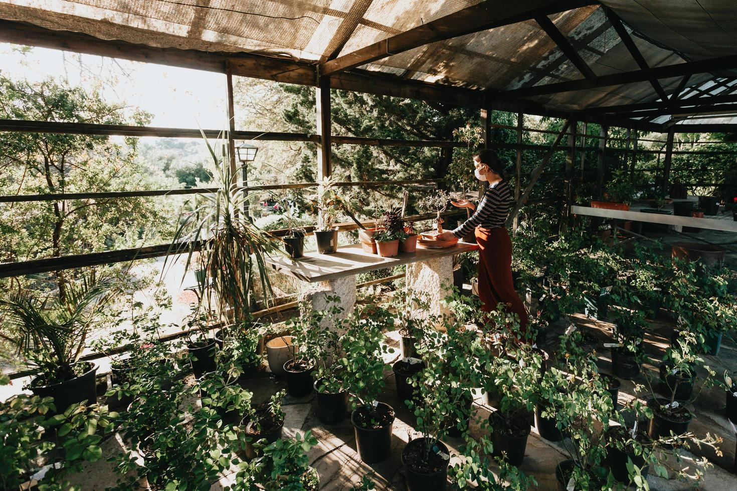 en kvinna som bär en mask som gör lite trädgårdsarbete foto