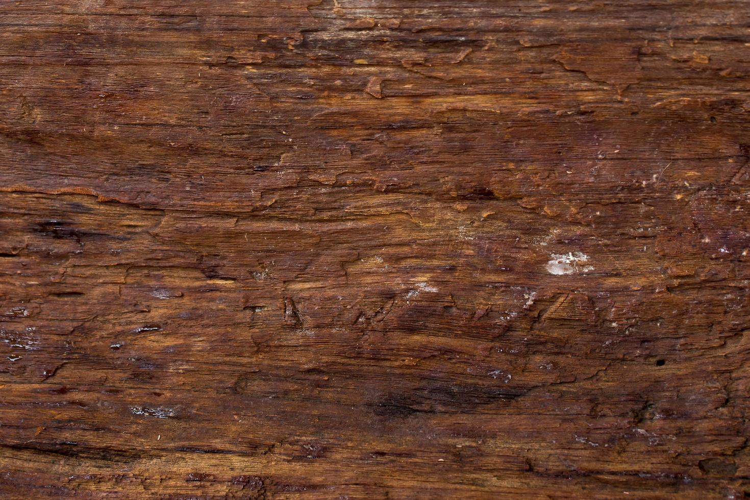 yta eroderas av tid, gammal trä bakgrund foto