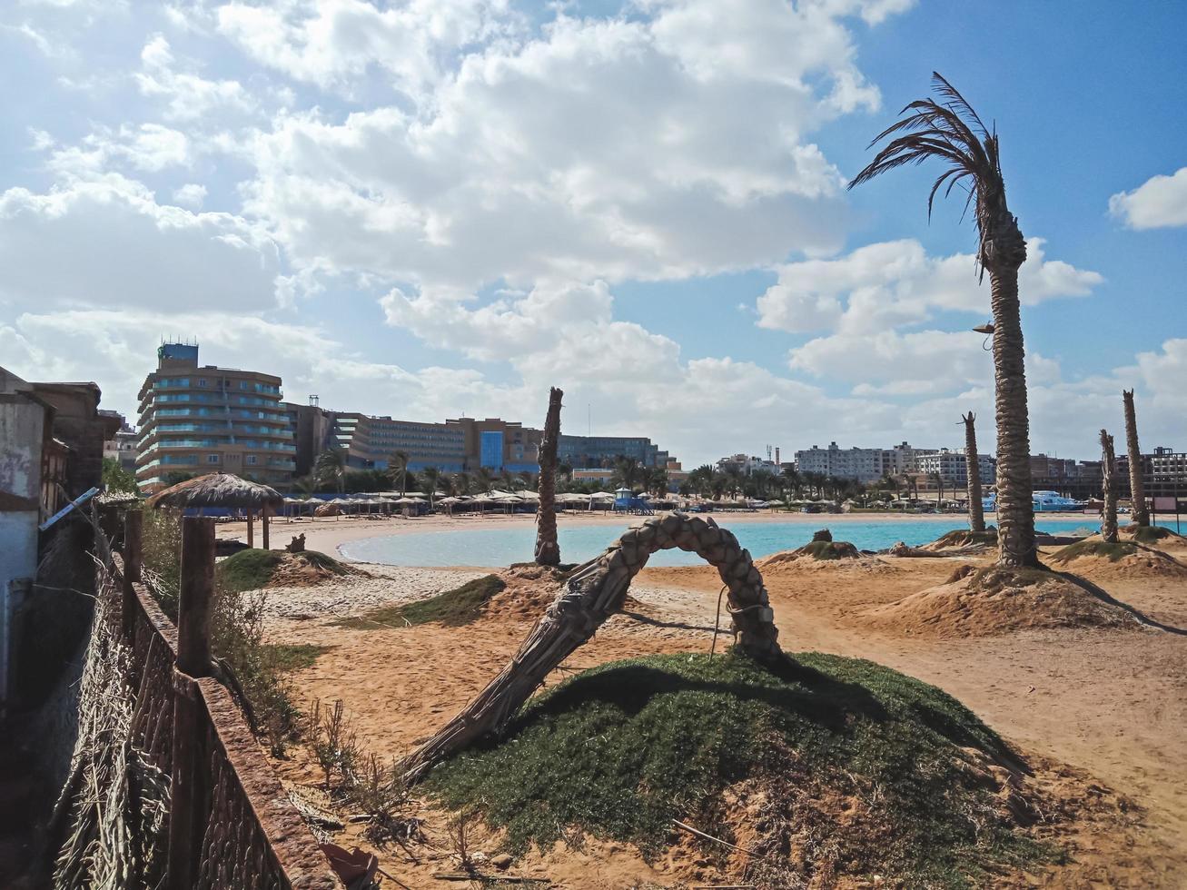 gamla palmer på stranden i Hurghada City, Egypten foto
