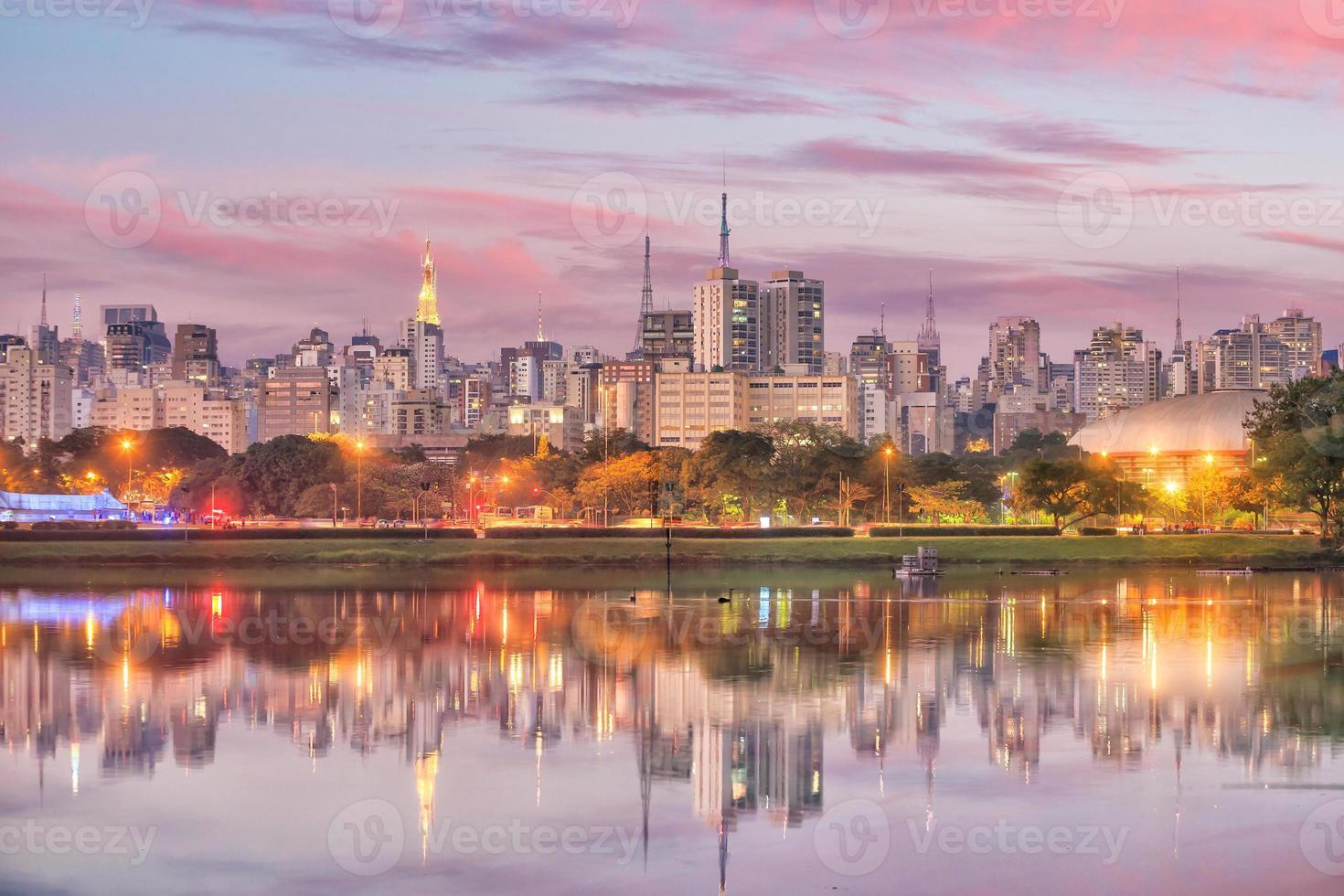 sao paulos skyline från parque ibirapuera park foto
