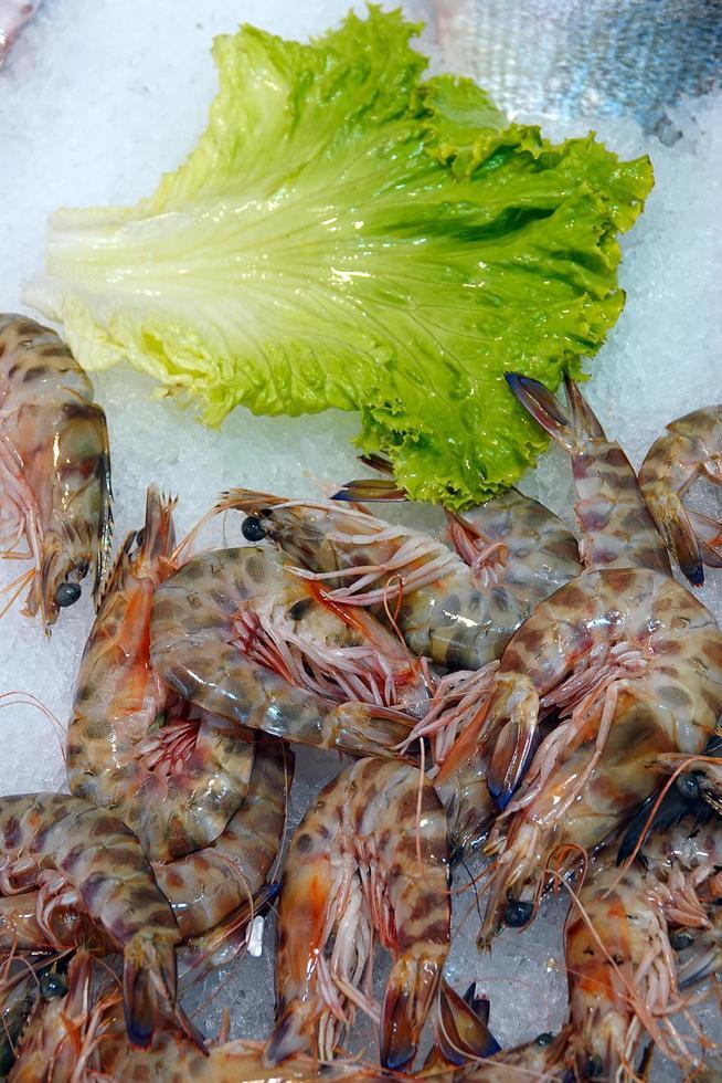 rå fisk kött mat räkor på is foto