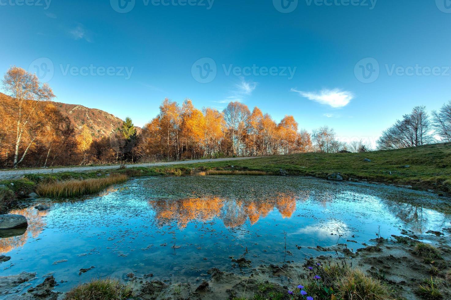 liten sjö med reflektioner av hösten foto