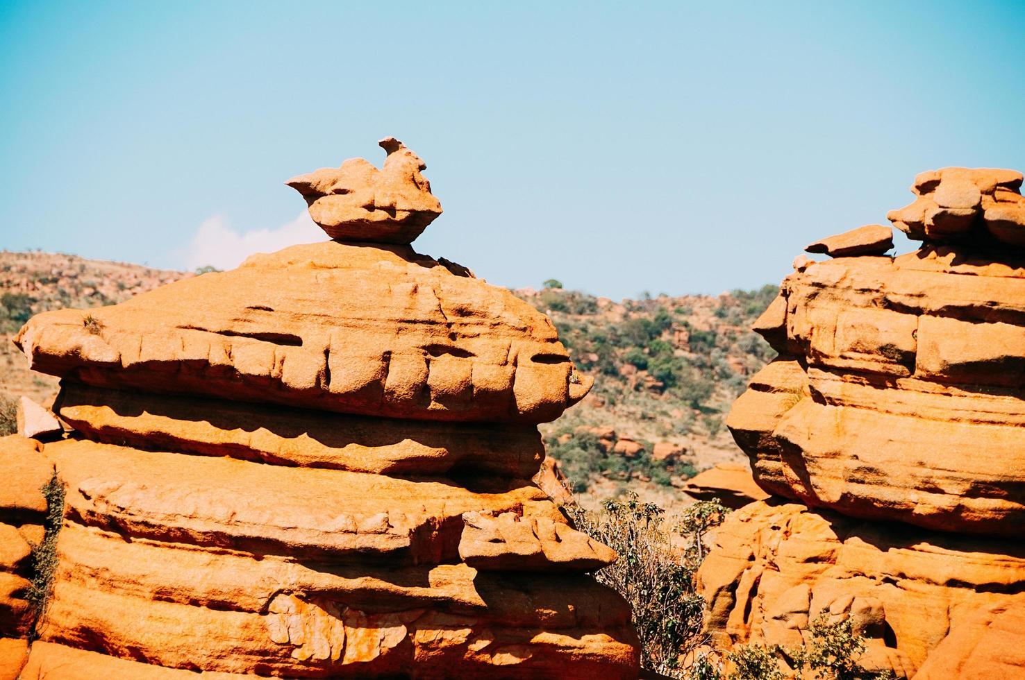 gula stenar på den sydafrikanska magaliesbergplatån foto
