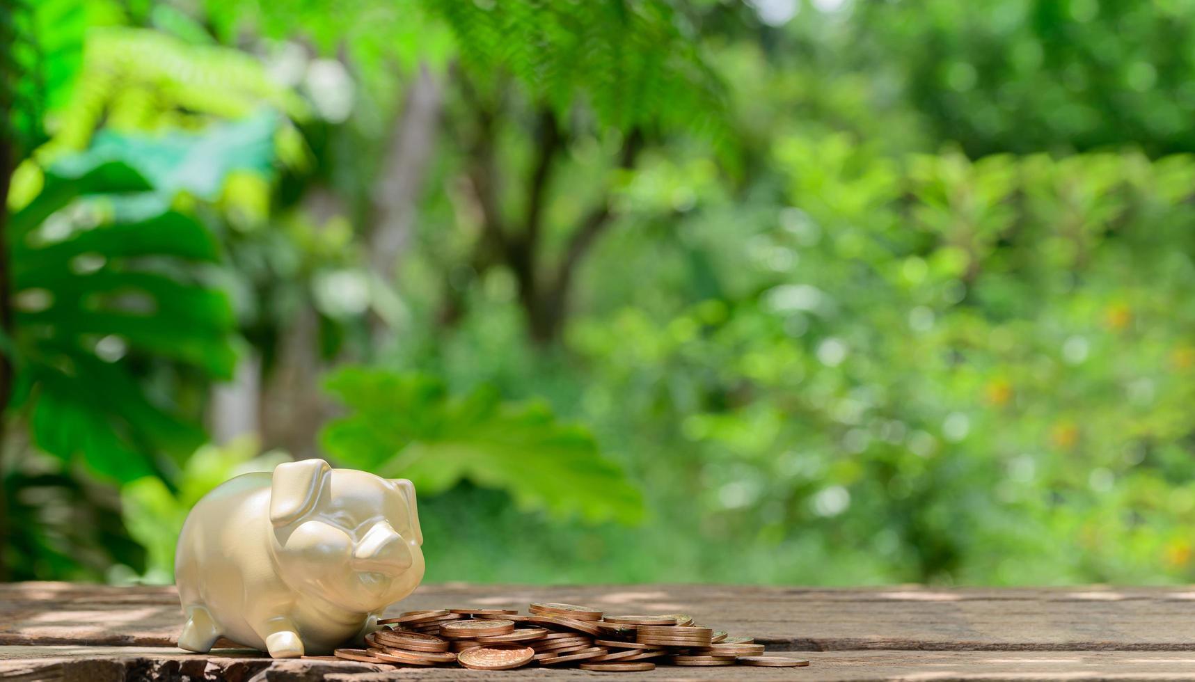koncept staplade mynt investera lager spara pengar foto