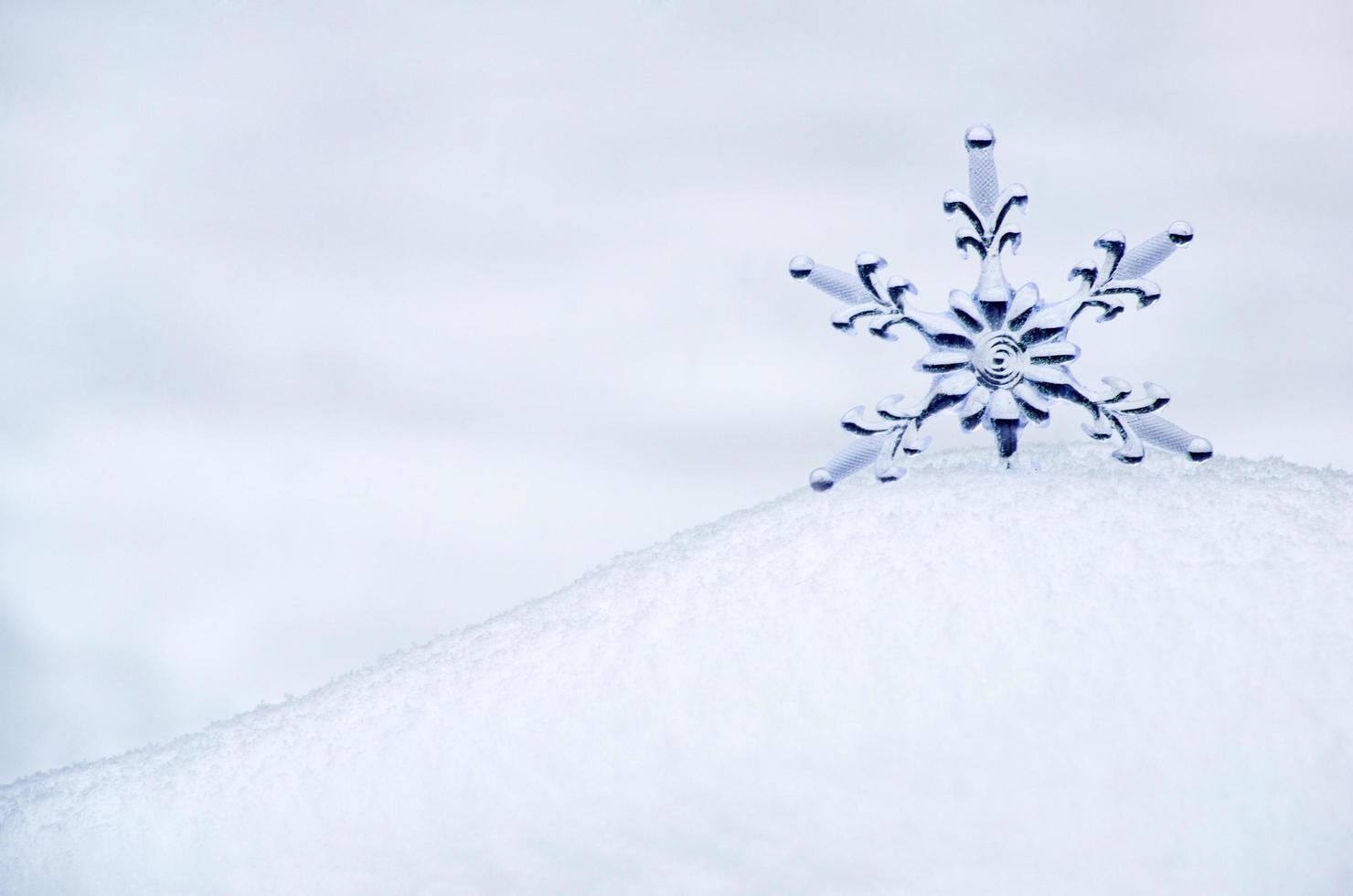 snöflinga snö bakgrund foto