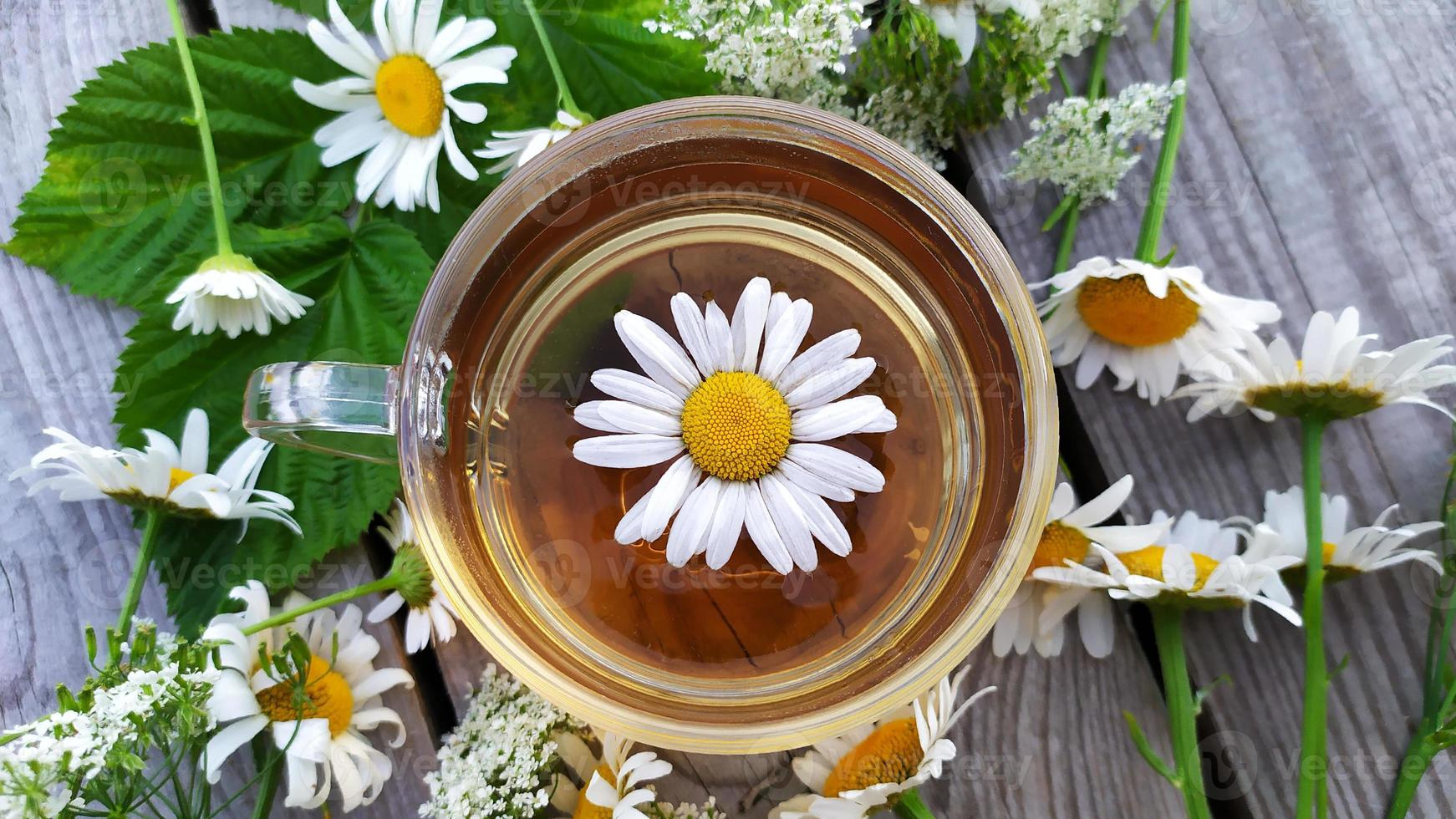 kamomillte. blommor, blad och en kopp med te på en träbakgrund. vy uppifrån. foto