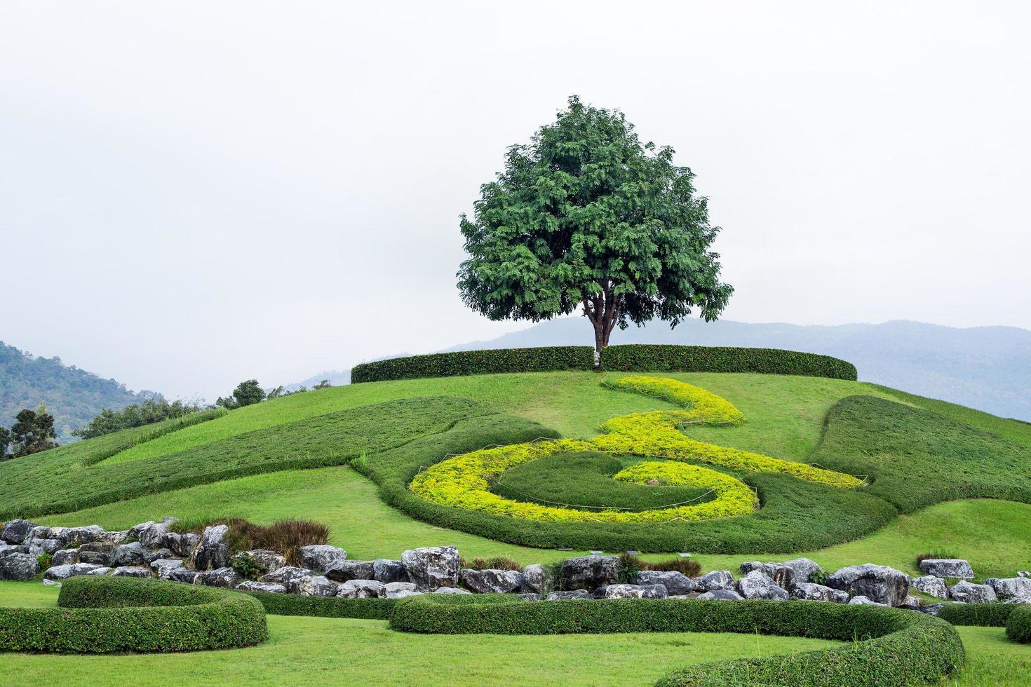 vacker trädgård i harmoni med naturen. foto